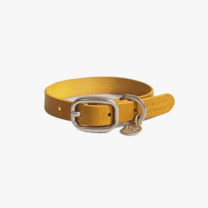 BABY COLLAR YELLOW