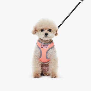 Neon Harness (Orange)