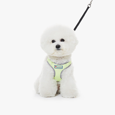 Neon Harness (Lime)